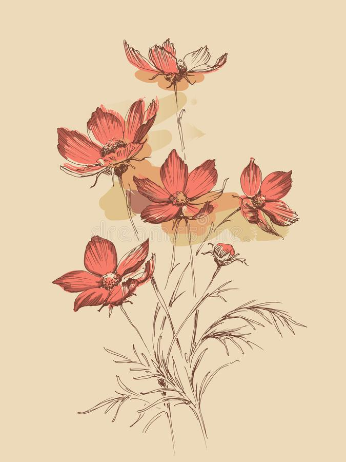 Wild flowers in spring bouquet. Wild flowers in spring pink bouquet, a few painting strokes in the background vector illustration