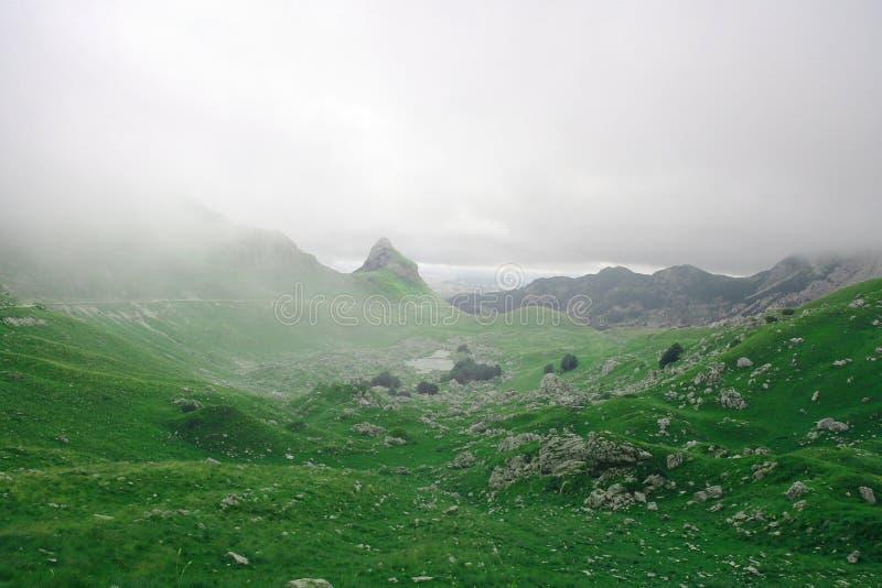 Wild fog mountains stock images