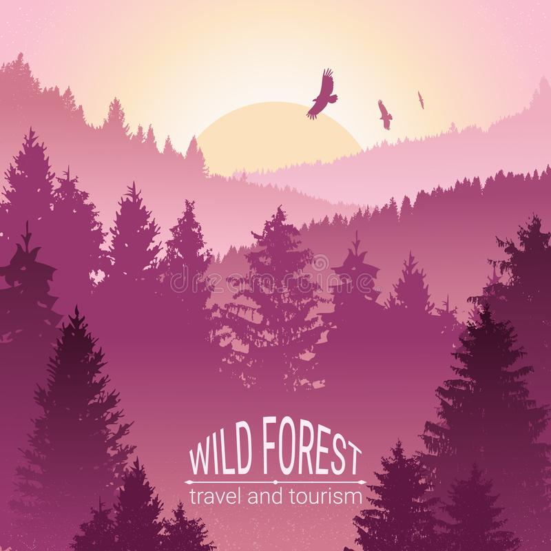 Wild forest. Sunrise, mountains, pine and spruce. Eagles, and birds in flight. Tourism and travel. Camping. The horizon line in th stock illustration