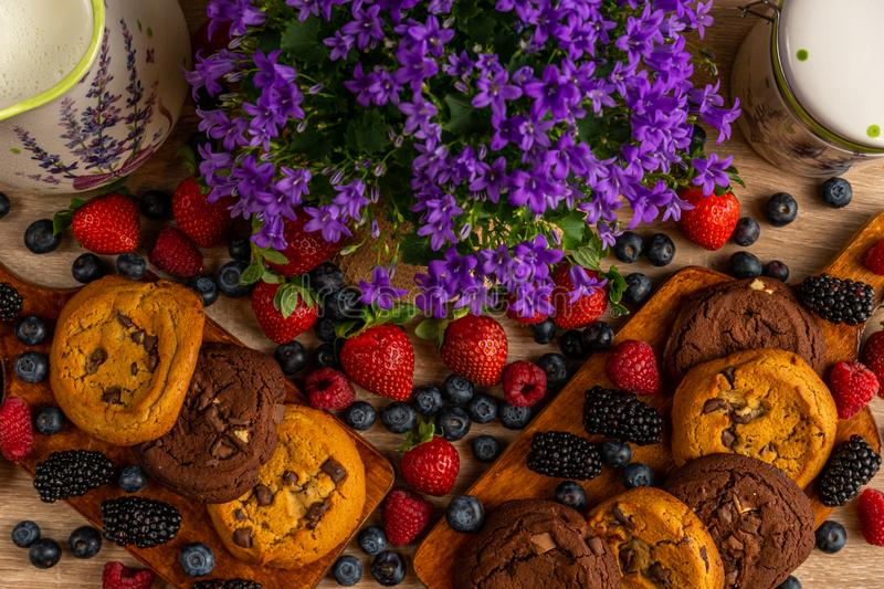 Wild fruits and chocolate biscuits with campanula close up royalty free stock photos