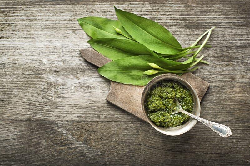 Wild garlic royalty free stock image