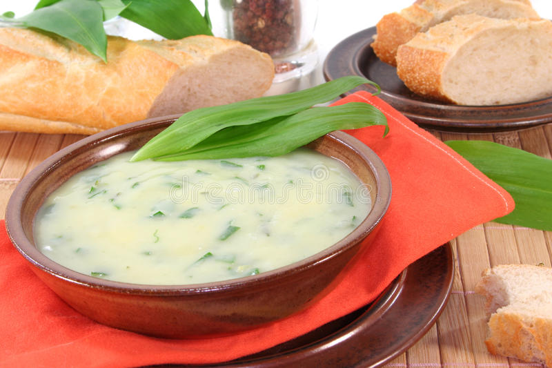 Wild garlic soup stock images