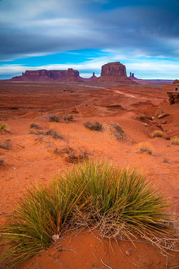 Wild grass in the Monument Valley, Navajo Land, Utah. Vertical view of the Monument Valley landscape with a green desert grass on the foreground. Navajo Land royalty free stock photo