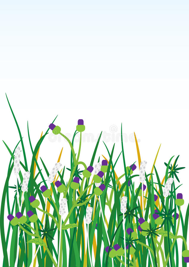 Wild Grasses Flowers Background_eps. Illustration of wild grasses and flowers with light blue and white colors background. --- This .eps file info Document: A4 stock illustration