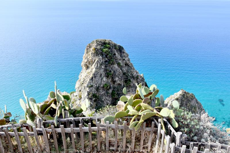 Viewpoint at Capo Vaticano , Calabria. Wild growing indian figs at the rocks of Capo Vaticano in Calabria royalty free stock images