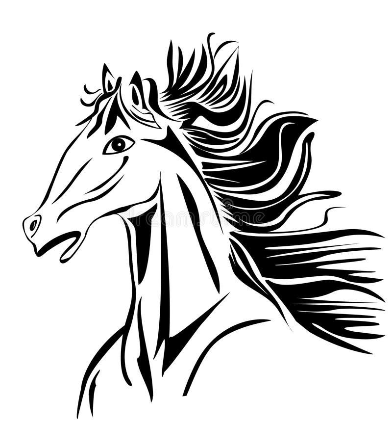 Download Wild head Horse vector stock vector. Image of isolated - 24332004