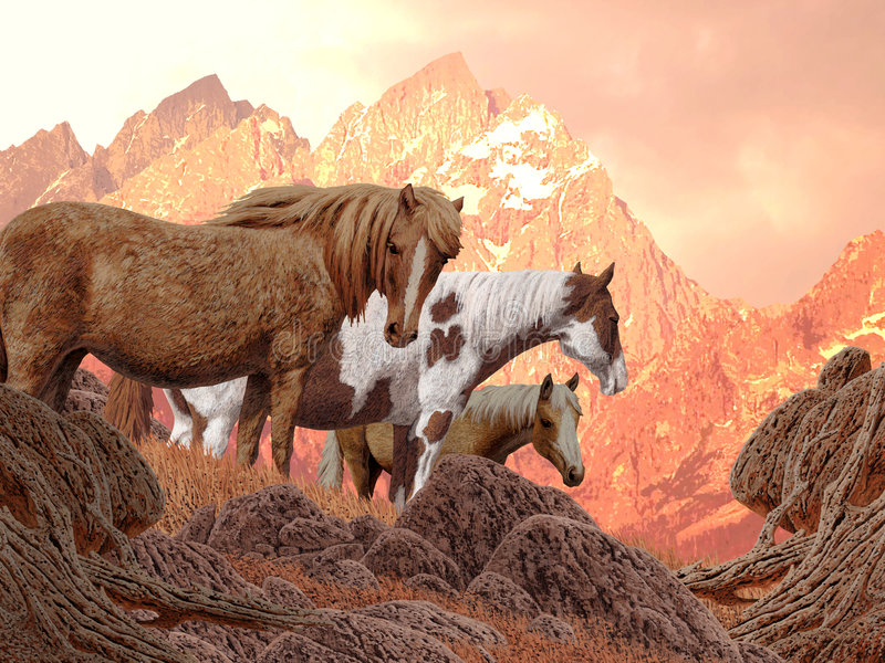 Wild Horses stock illustration