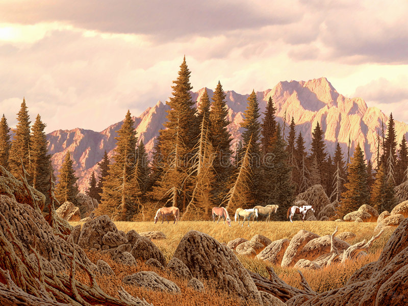 Wild Horses in the Rockies stock image