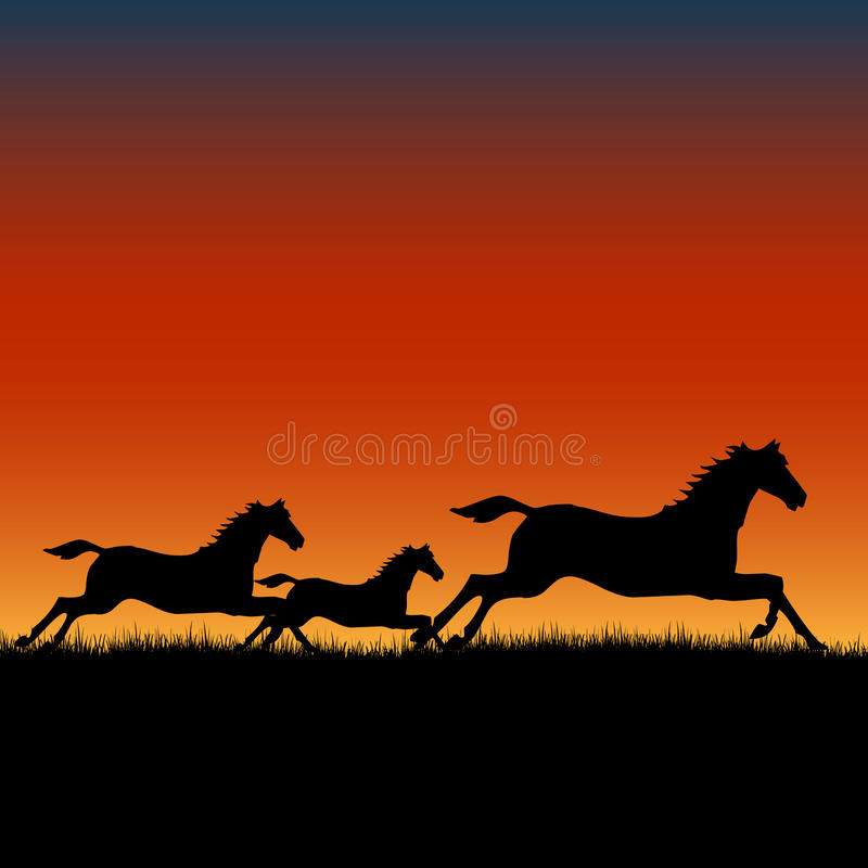 Wild horses running at sunset. Vector handmade illustration of wild horses running in the prairie at sunset as silhouettes