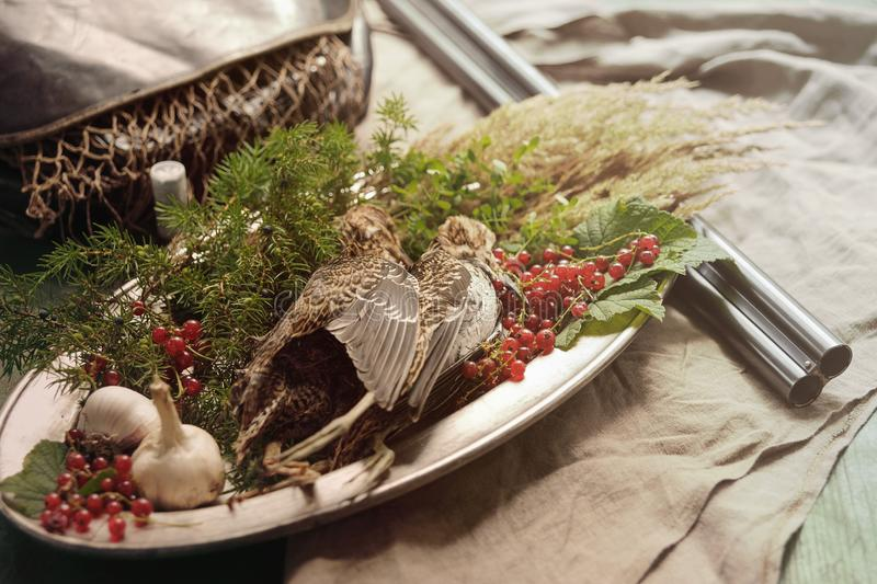 Wild hunting fowls in cooking. Two snipe or woodcock lie on metal dish. Wildfowl hunting. Wild hunting fowls in cooking. Two snipe or woodcock lie on metal dish stock photos