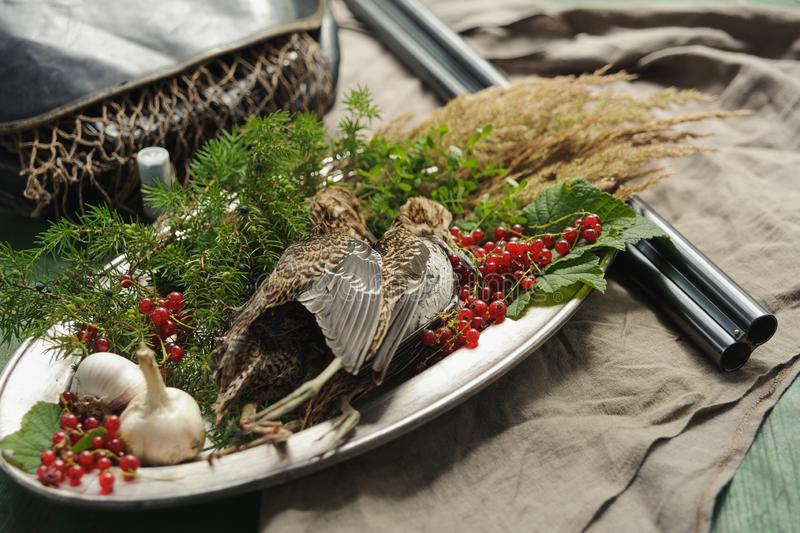 Wild hunting fowls in cooking. Two snipe or woodcock lie on metal dish. Wildfowl hunting. Wild hunting fowls in cooking. Two snipe or woodcock lie on metal dish royalty free stock images