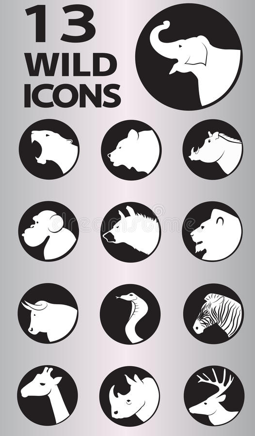 Wild icons collection. Wild icon collection. Vector in Eps10 format vector illustration