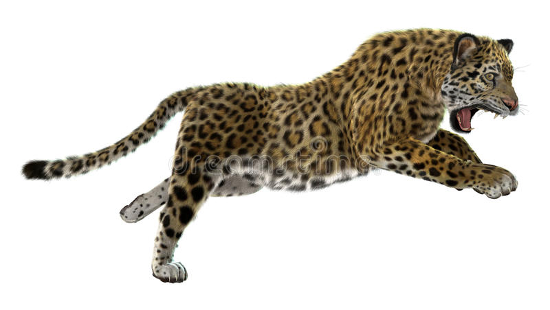 wild jaguar royaltyfri illustrationer