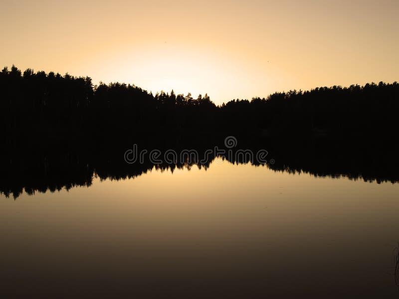 Download Wild lake fotografering för bildbyråer. Bild av solsken - 19796855