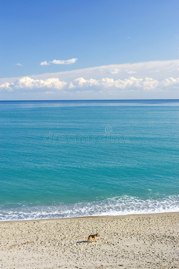 Free Wild Landscape Of The Mediterranean Sea In Spain Royalty Free Stock Photos - 671638