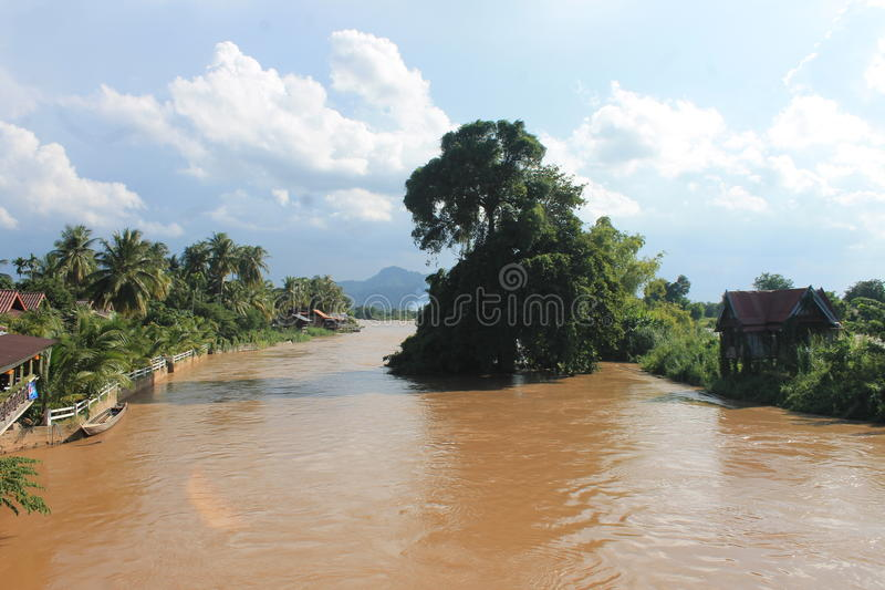 In the wild in laos stock image