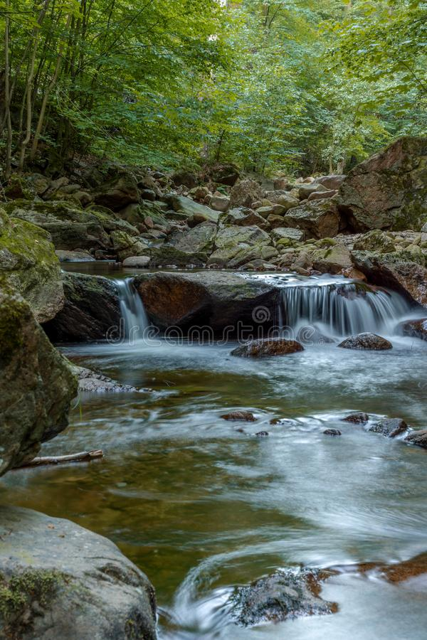 Wild motion mountain river with waterfalls over wet rocks in a forest nature landscape stock images