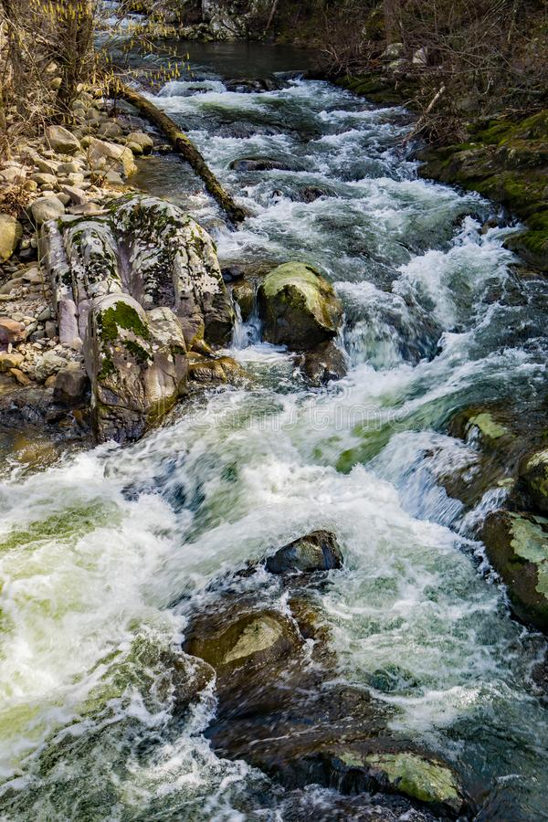 A Wild Mountain Trout Stream in the Blue Ridge Mountains. A wild mountain trout stream located in the Blue Ridge Mountains of Botetourt County, Virginia, USAn royalty free stock image