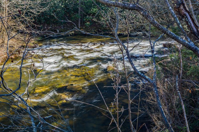 Wild Mountain Trout Stream in the Forest. Wild mountain trout stream located in the forest of the Jefferson National Forest, Giles County, Virginia, USA royalty free stock photos