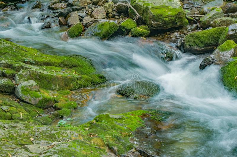 Wild Mountain Trout Stream in the Forest - 2. Wild mountain trout stream located in the Jefferson National Forest, Botetourt County, Virginia, USA stock images