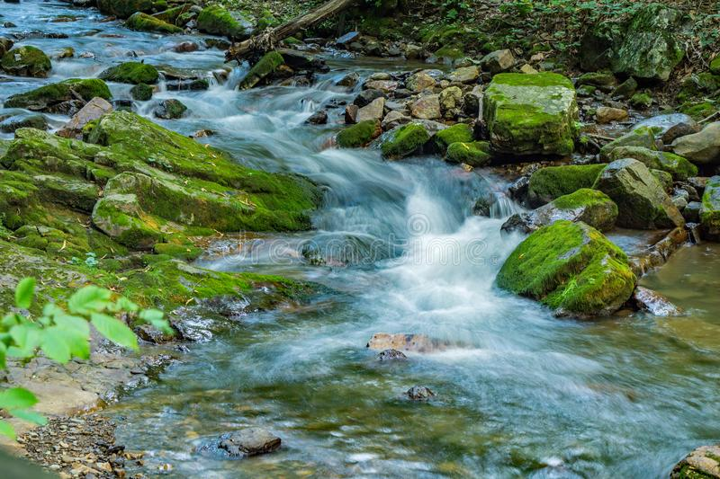 Wild Mountain Trout Stream in the Forest - 3. Wild mountain trout stream located in the Jefferson National Forest, Botetourt County, Virginia, USA stock photos