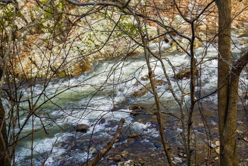 Wild Mountain Trout Stream. Jennings Creek is a popular wild mountain trout stream located in the Blue Ridge Mountains, Botetourt County, Virginia, USA royalty free stock photography