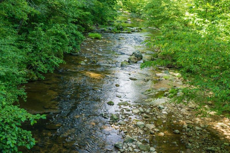 Wild Mountain Trout Stream. A wild mountain trout stream located in the Blue Ridge Mountains of Botetourt County, Virginia, USA stock photo