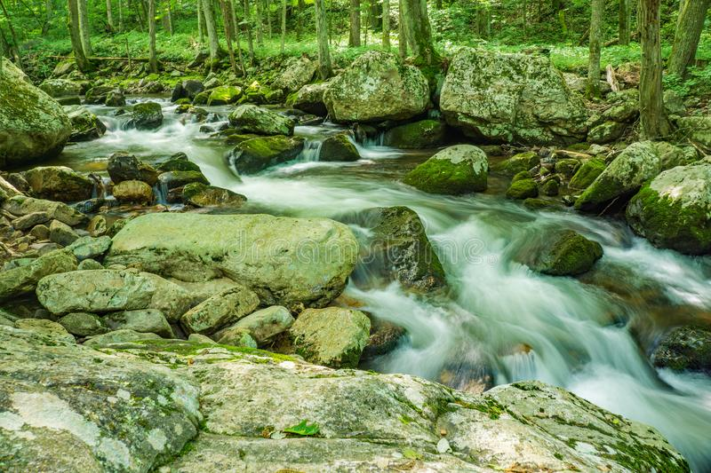 Wild Mountain Trout Stream - 3. Wild Mountain Trout Stream located in the Jefferson National Forest, Giles County, Virginia, USA stock photos