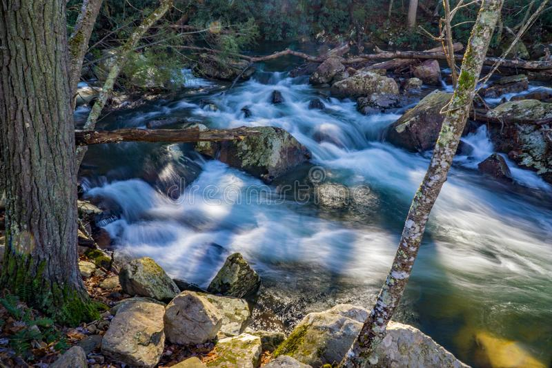 Wild Mountain Trout Stream. Located in Jefferson National Forest, Giles County, Virginia, USA stock photos