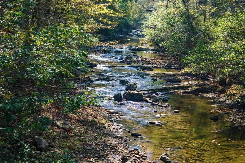 Wild Mountain Trout Stream. A wild mountain trout stream located in the Blue Ridge Mountains of Virginia, USA royalty free stock images