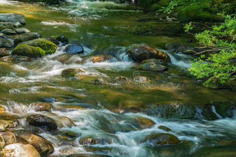 Wild Mountain Trout Stream. A wild mountain trout stream located in the Blue Ridge Mountains of Virginia, USA royalty free stock photography