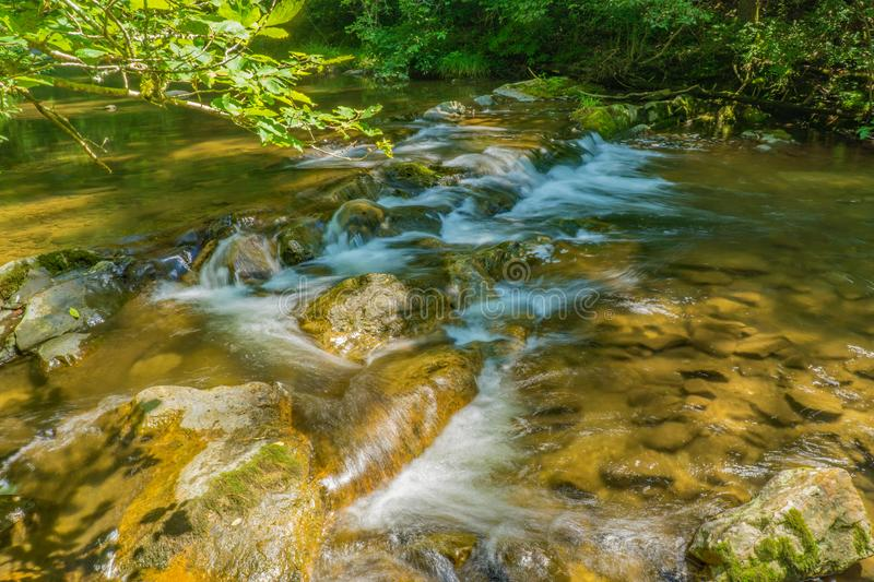 Wild Mountain Trout Stream - 2. A wild mountain trout stream located in the Blue Ridge Mountains of Virginia, USA stock photography