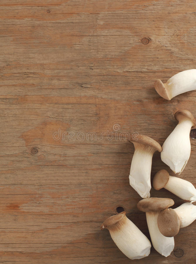 Download Wild mushroom stock image. Image of produce, brown, background - 28466275