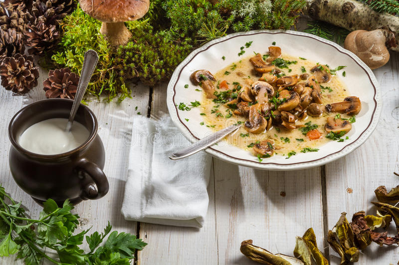 Wild mushroom soup and ingredients royalty free stock image