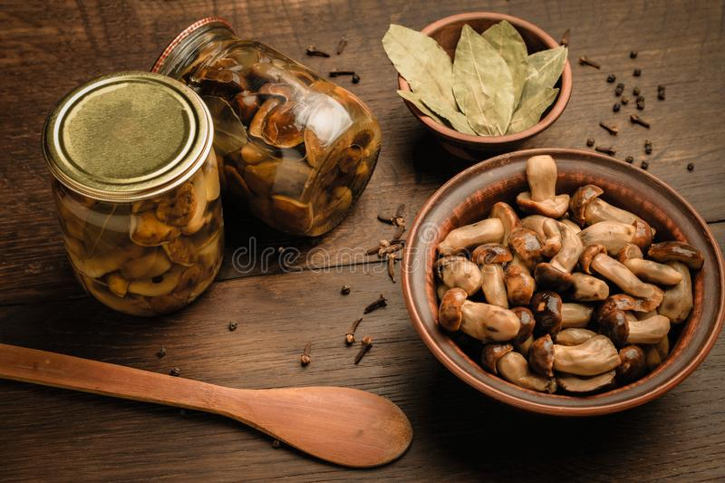 Wild mushrooms and seasonings for pickling.  stock images