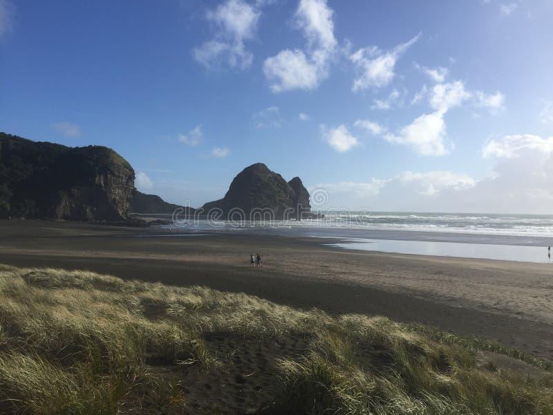 Wild New Zealand beach royalty free stock image