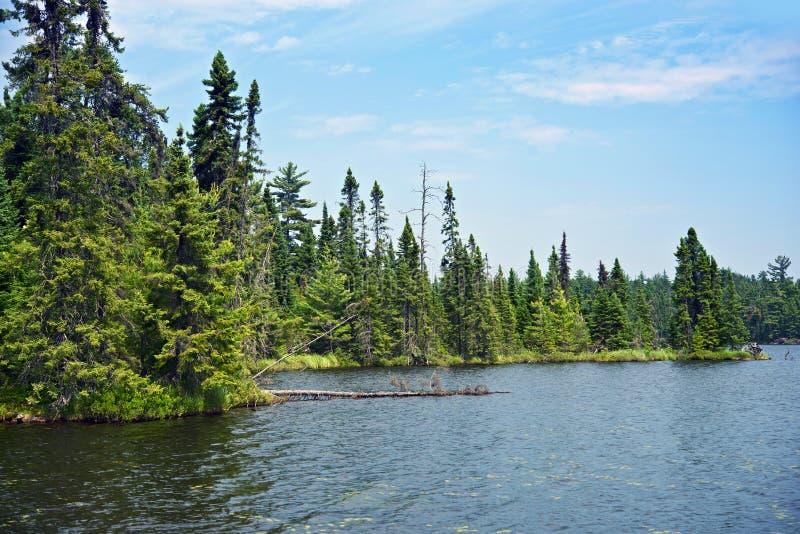 Wild Noordelijk Minnesota royalty-vrije stock foto
