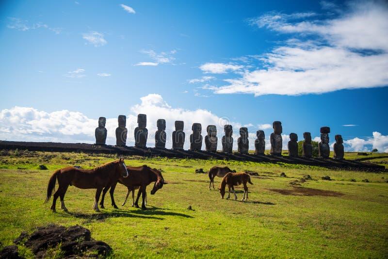 Wild paarden tegen Ahu Tongariki stock afbeelding