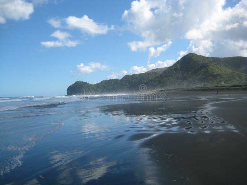 Wild Piha Beach. Waves on the wild Piha Beach, New Zealand royalty free stock photo