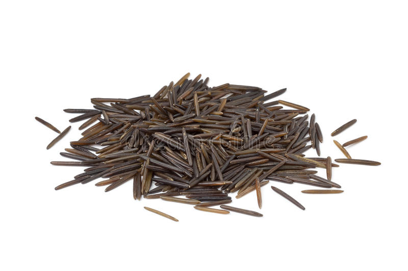 Download Wild rice stock photo. Image of wild, brown, white, organic - 21474632