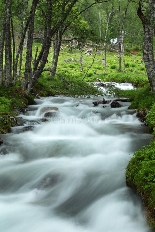 Download Wild river stock image. Image of flow, mist, misty, beautiful - 27147543