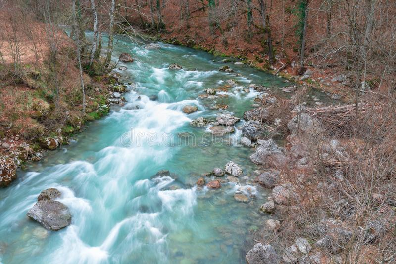 Wild river and the feeling of freedom stock image