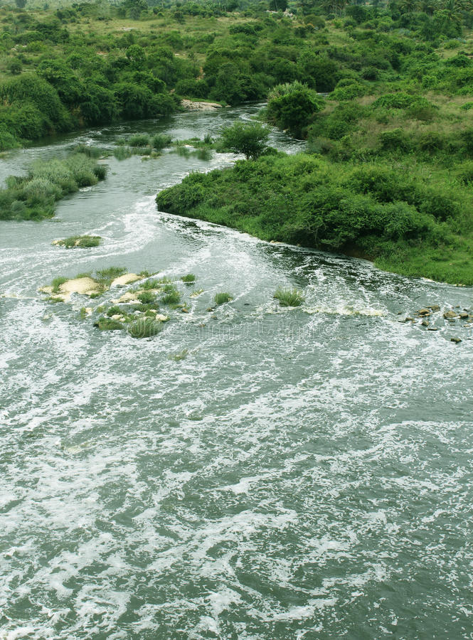 Wild river. With green fields and trees landscape stock image