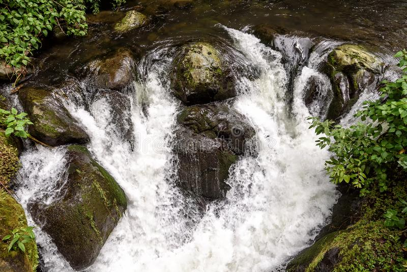 Wild river in the montains of Costa Rica. Wild river with rapids in the mountains in Costa Rica stock photos