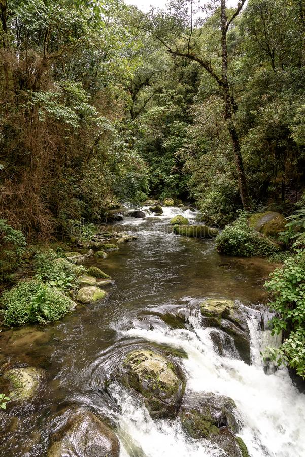 Wild river in the montains of Costa Rica. Wild river with rapids in the mountains in Costa Rica stock photography