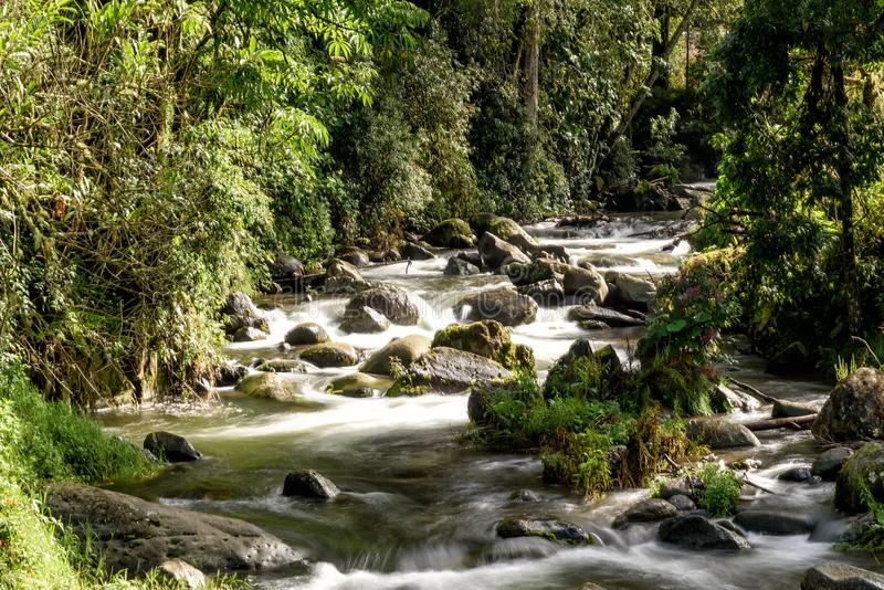 Wild river in the montains of Costa Rica. Wild river with rapids in the mountains in Costa Rica royalty free stock photos