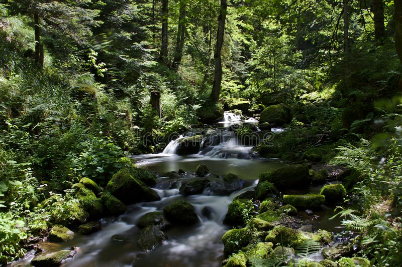 Wild river in the Ravennaschlucht in summer stock photos
