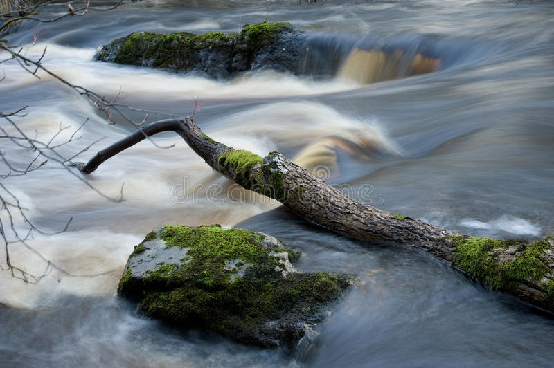 Download Wild River In Sweden stock image. Image of environment - 22719193