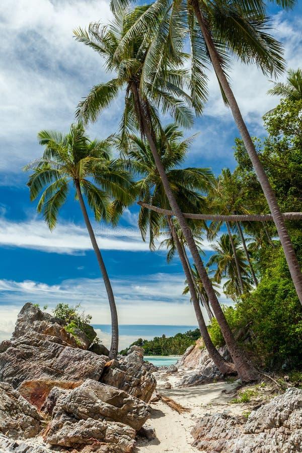 Wild, rocky beach on tropical island, Koh Samui, Thailand stock photos