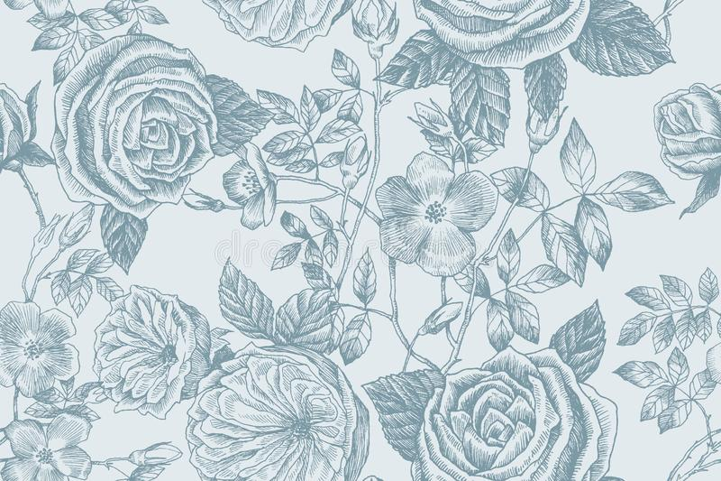 Wild roses blossom branch seamless pattern. Vintage botanical hand drawn illustration. Spring flowers of garden rose stock illustration